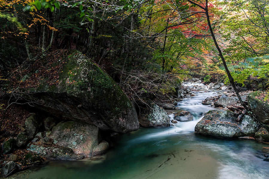 04.増富温泉と渓谷美 11