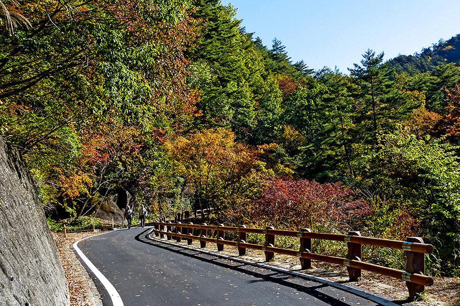 04.増富温泉と渓谷美 16