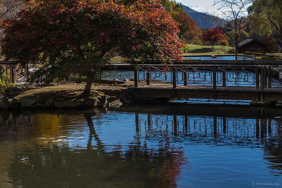 06.長澤の鯉のぼりと花の森公園 17