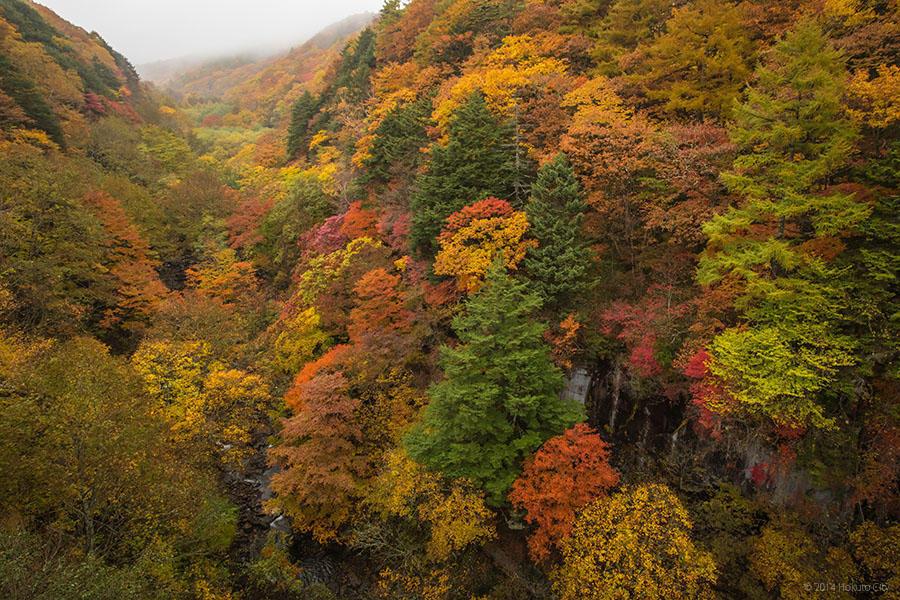 09.東沢大橋とまきば公園からの景観 13