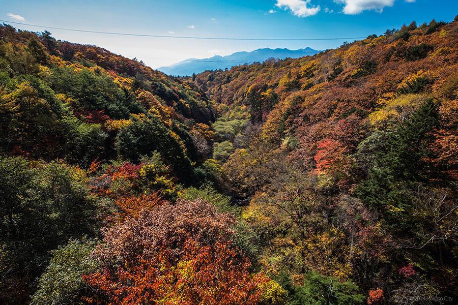 09.東沢大橋とまきば公園からの景観 15
