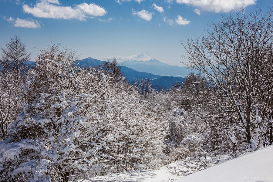 09.東沢大橋とまきば公園からの景観 28