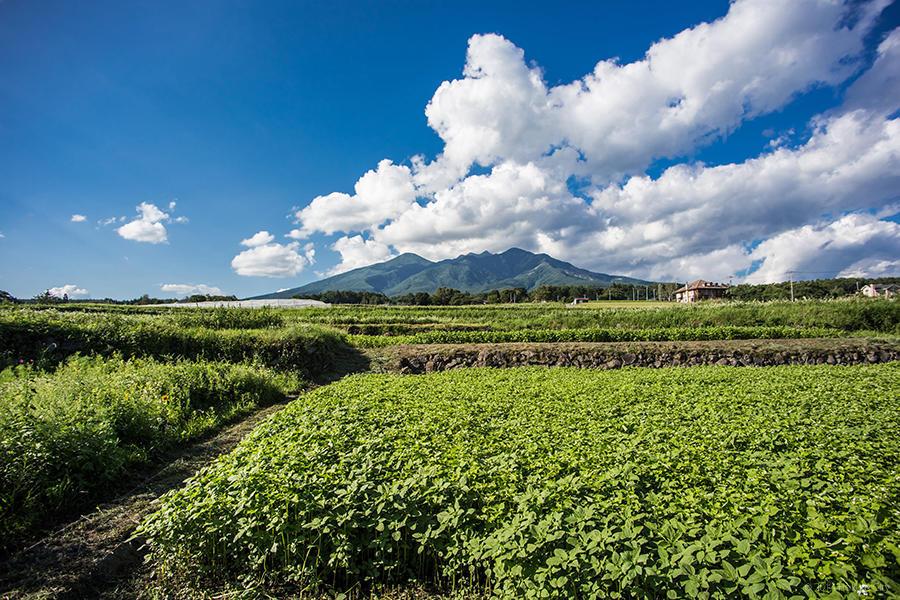 12.レインボーラインと富士見坂からの大パノラマ 01