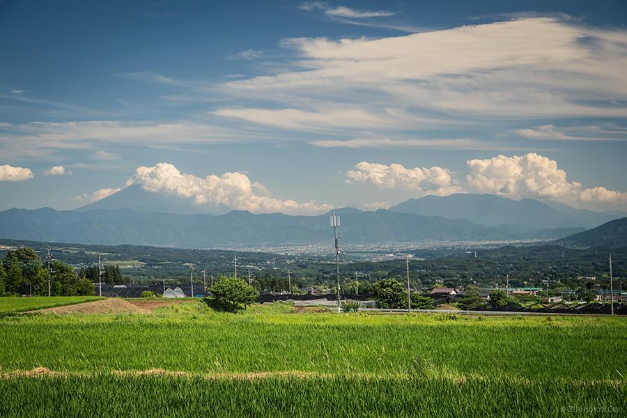 12.レインボーラインと富士見坂からの大パノラマ 10