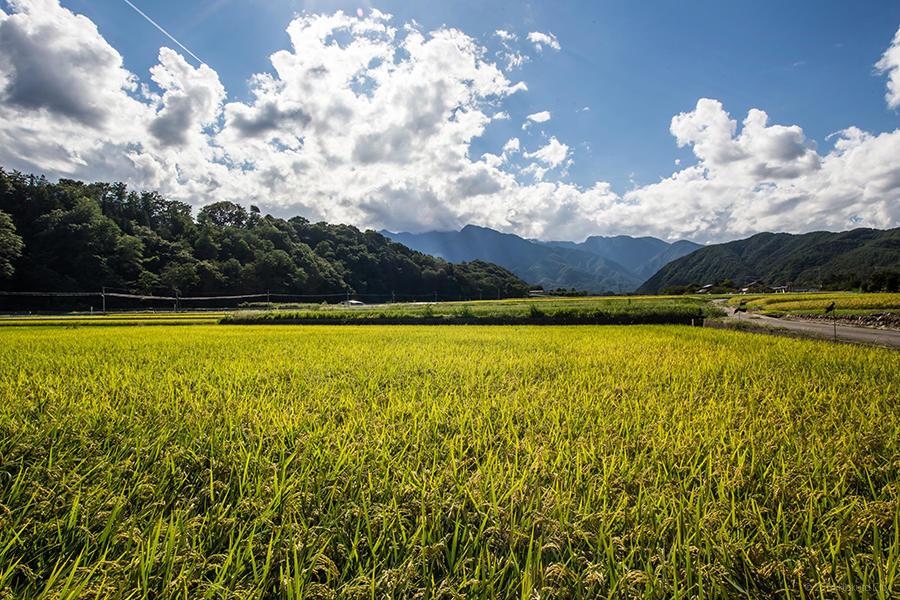 23.武川米の郷、田園風景 06