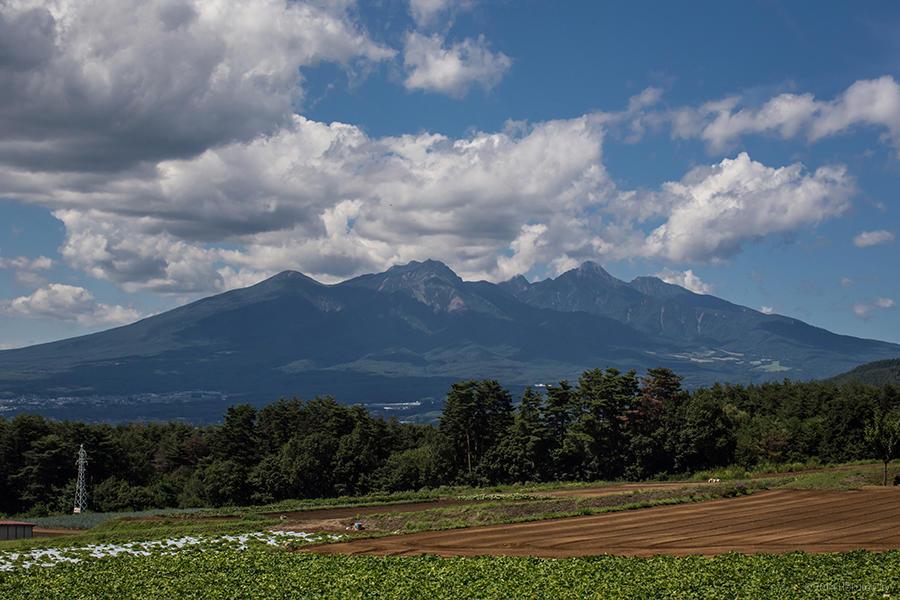 八ヶ岳 04