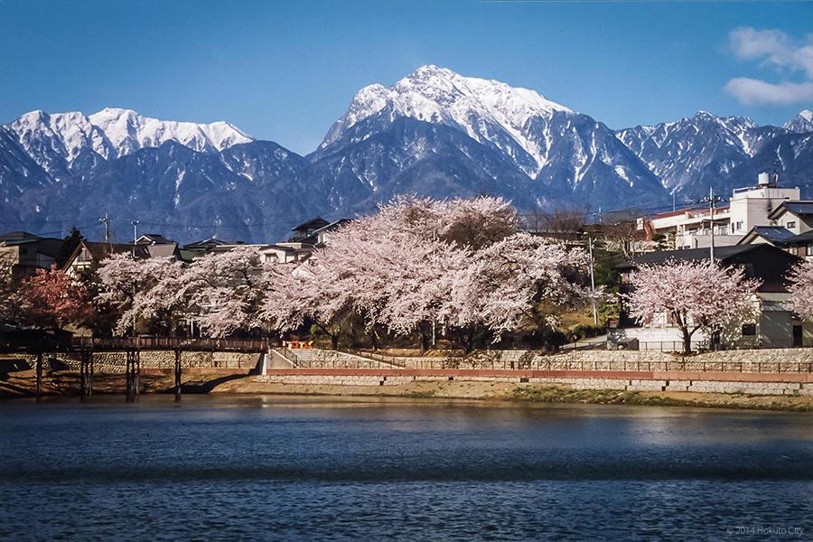 甲斐駒ヶ岳 01