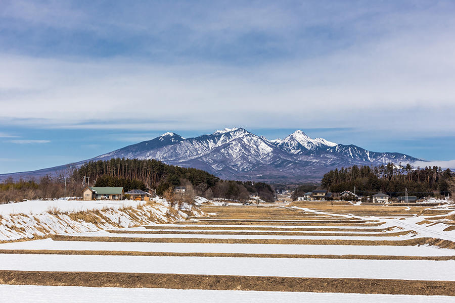 八ヶ岳 12