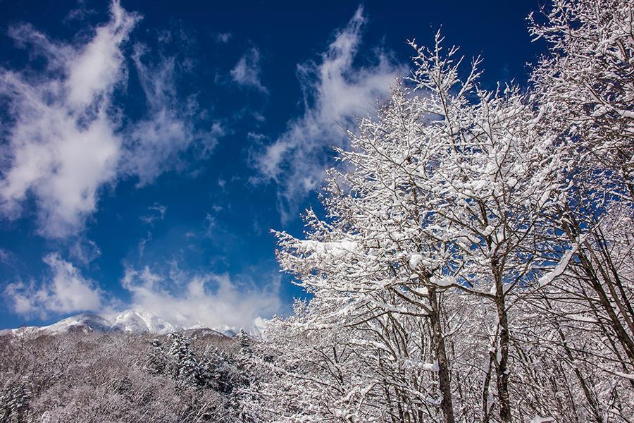 雪景色 05