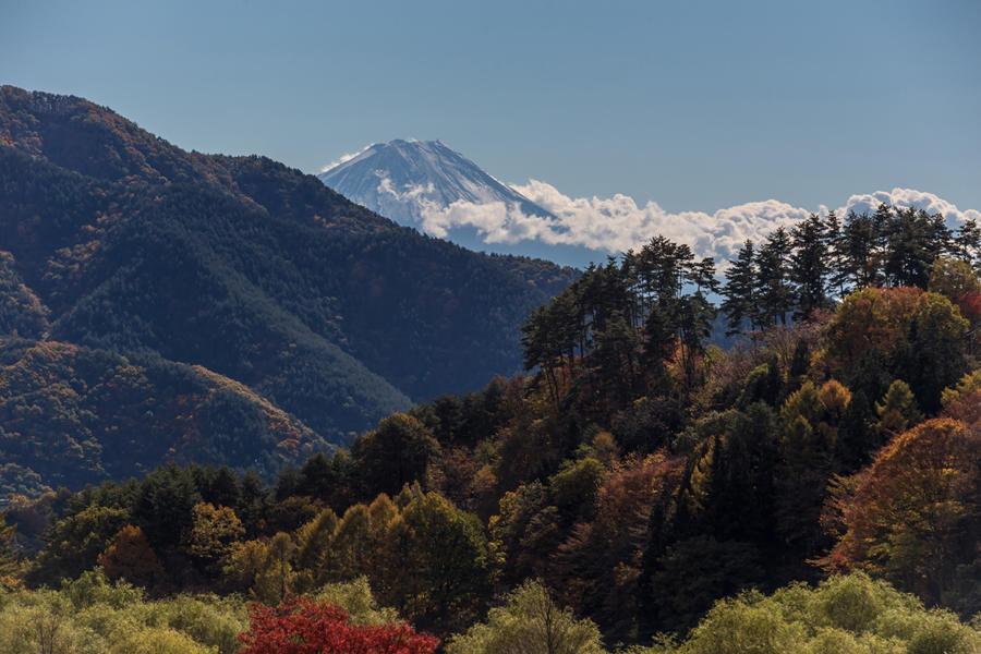 道の駅南きよさとから望む富士山