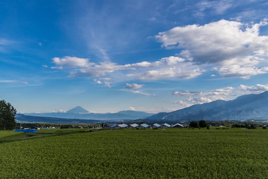 レインボーラインから望む富士山