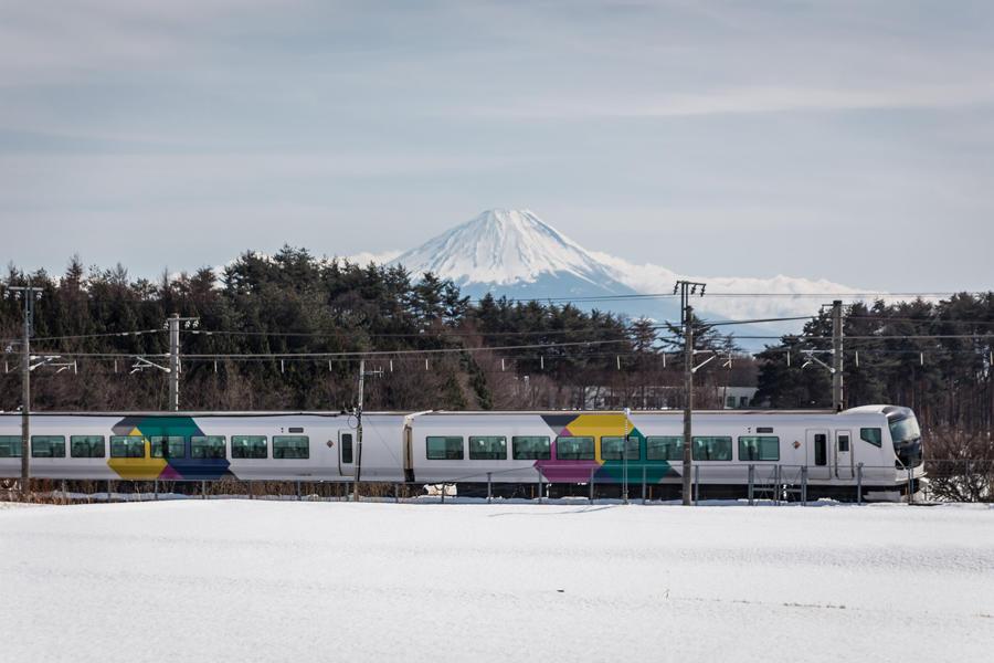 神田の大糸桜から望む富士山