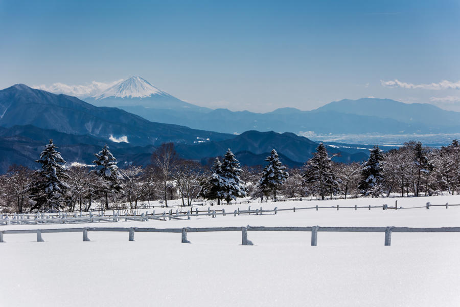 清泉寮から望む富士山